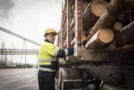 Yrittäjä Markku Patama ajaa puuta Äänekosken sellutehtaalle lähialueelta. Kerralla kyytiin mahtuu 40-42 tonnin lasti. (Kuva: Mikko Suutala)