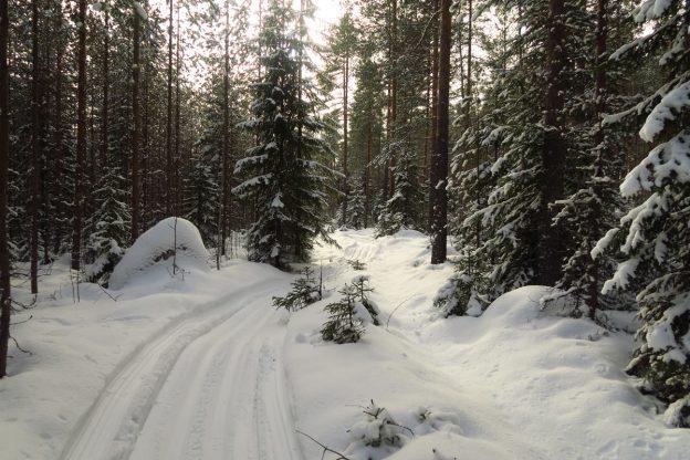 Kuva Laulavan Mörön Polun Facebook -sivulta.